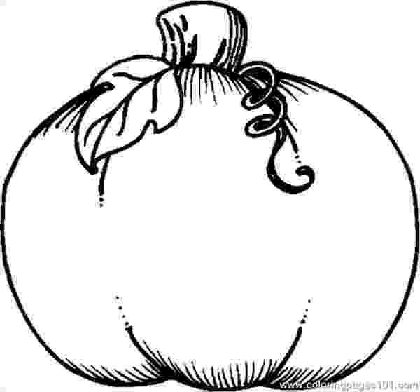blank pumpkin template pumpkin patch coloring page free download best pumpkin pumpkin template blank