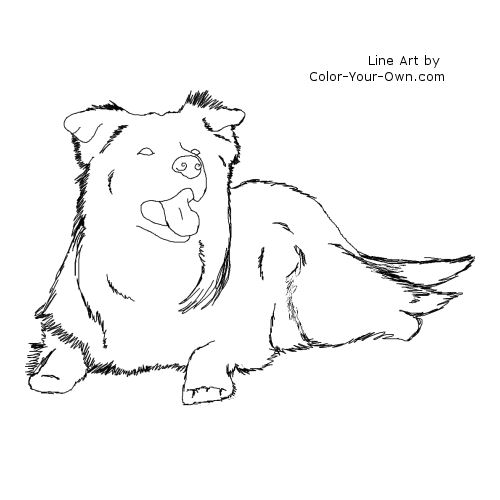 border collie pictures to color border collie coloring book pages coloring pages pictures collie border color to
