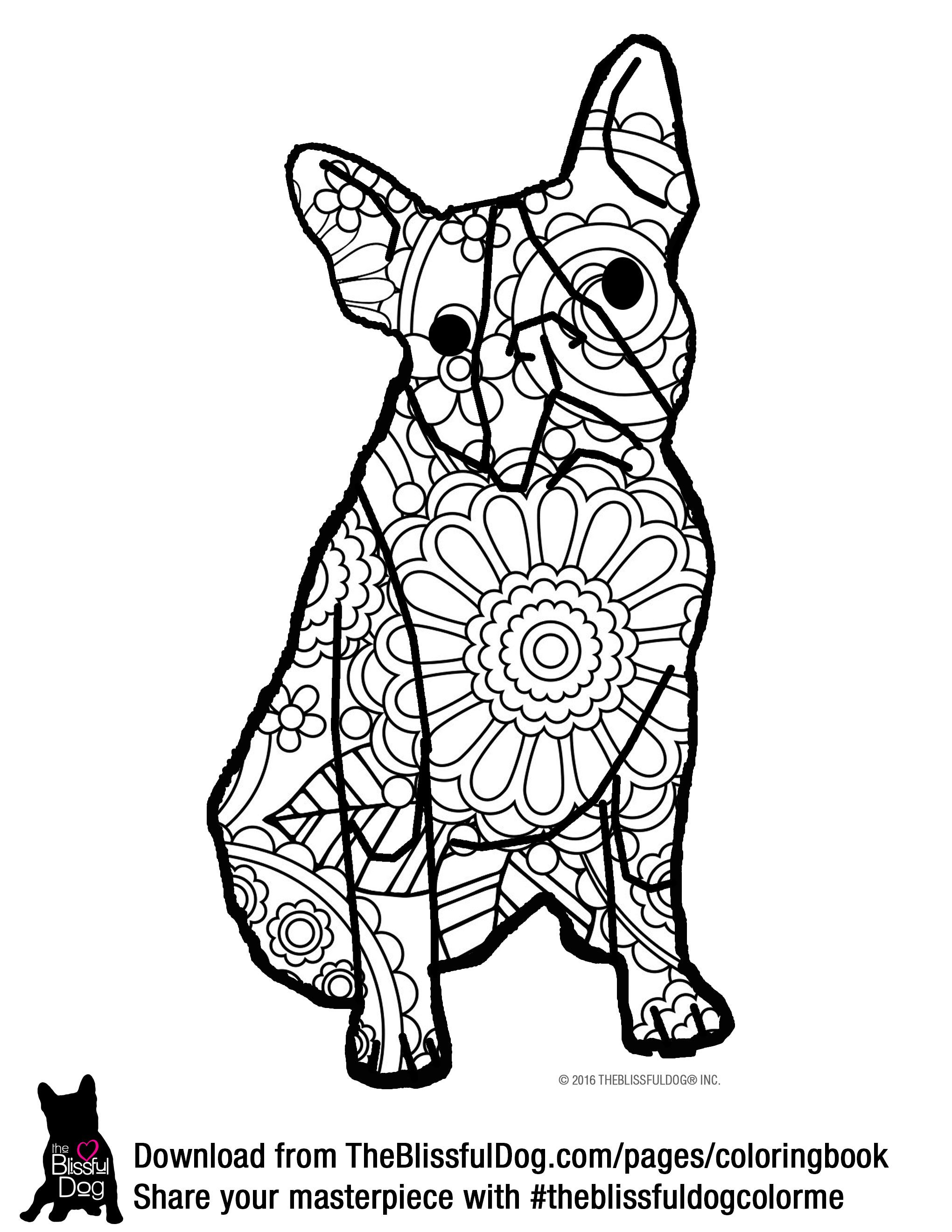 boston terrier coloring page boston terrier drawing at getdrawingscom free for terrier boston page coloring