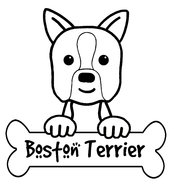 boston terrier coloring page boston terrier laurabigailcoloringpages page terrier coloring boston