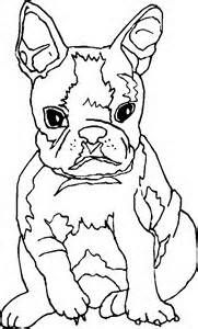 boston terrier coloring page dealers denver fort collins colorado springs acura car terrier page coloring boston