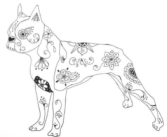 boston terrier coloring page items similar to sugar skull boston terrier pen and ink boston terrier page coloring