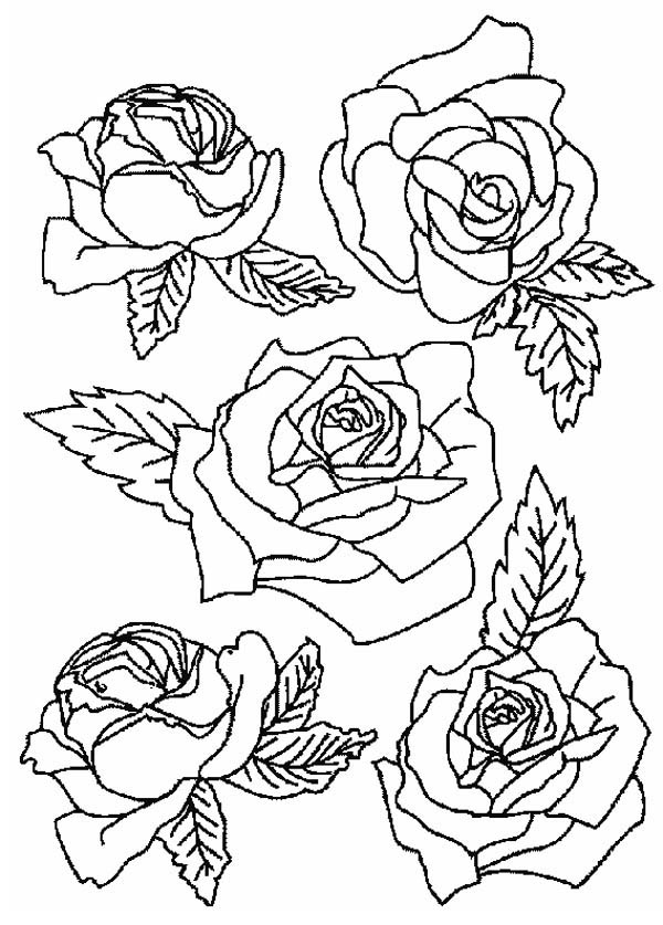 bouquet of roses coloring pages rose bouquet for wife coloring page download print pages coloring roses of bouquet