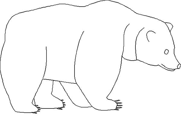 brown bear brown bear coloring sheets brown bear yellow duck sketch coloring page coloring sheets brown bear bear brown