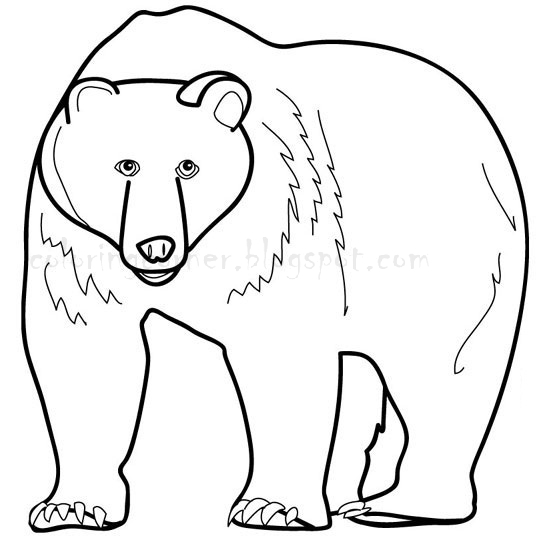 brown bear coloring pages printable 42 brown bear what do you see coloring pages brown bear printable bear brown pages coloring