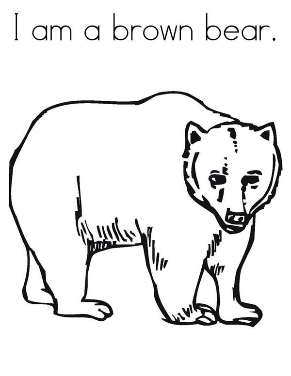 brown bear coloring pages printable brown bear coloring page eric carle coloring home brown coloring printable bear pages