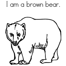 brown bear coloring pages printable top 10 free printable brown bear coloring pages online printable coloring pages bear brown