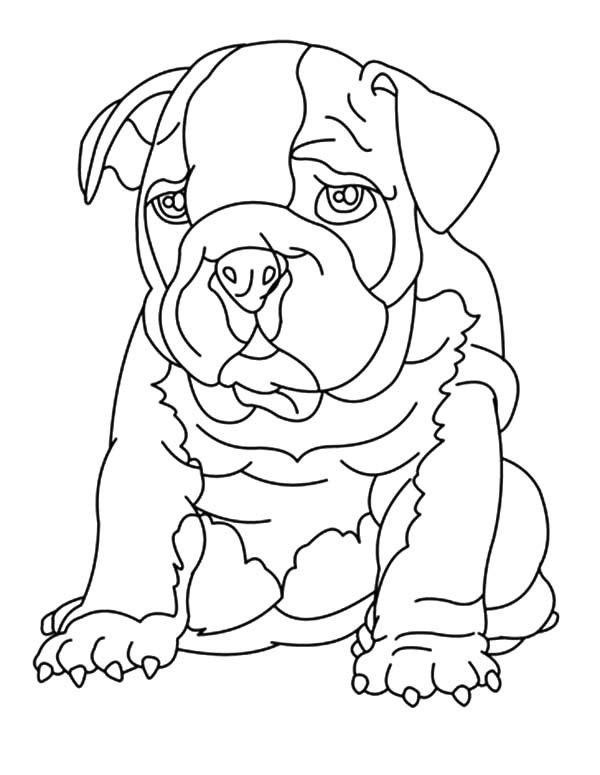 bulldog coloring pages 2012 01 15 bulldog coloring pages