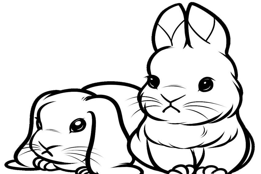 bunny pictures to color dulemba coloring page tuesday bunny painting color to bunny pictures