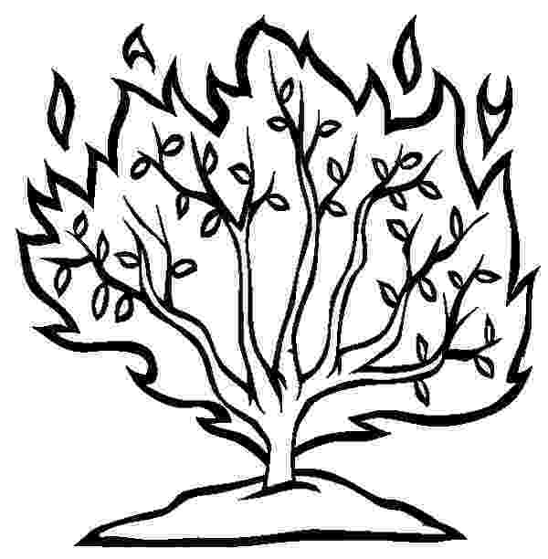 burning bush coloring page advent reflection god is here joyful wanderings page burning bush coloring