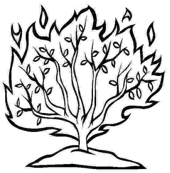 burning bush coloring page burning bush coloring page craft coloring pages coloring bush burning page