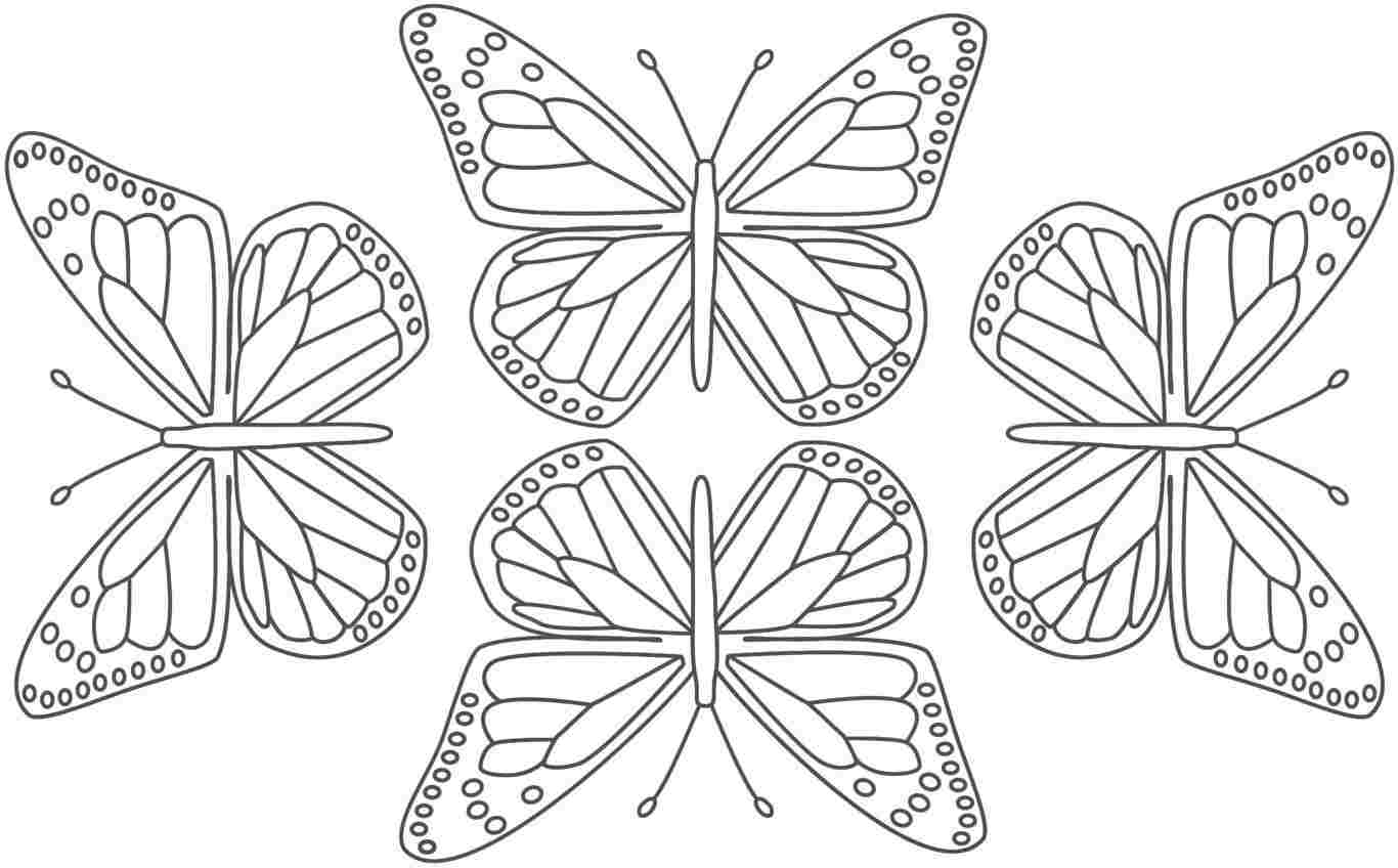 butterflies to color expose homelessness saint patrick39s day butterflies butterflies to color