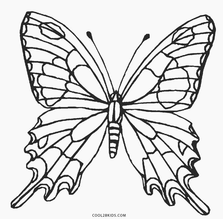 butterflies to color printable butterfly coloring pages for kids cool2bkids to butterflies color