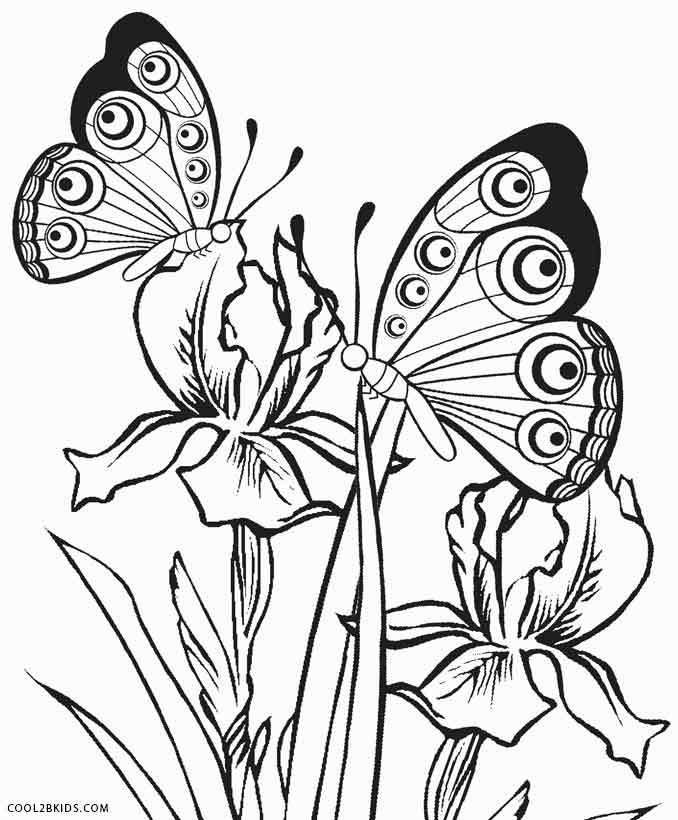 butterflies to color simple butterfly coloring pages getcoloringpagescom to butterflies color