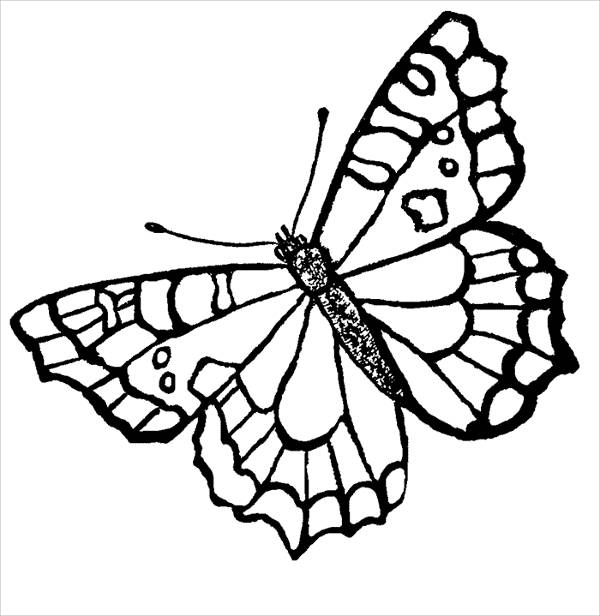 butterfly color sheets 10 butterfly coloring pages free premium templates sheets butterfly color