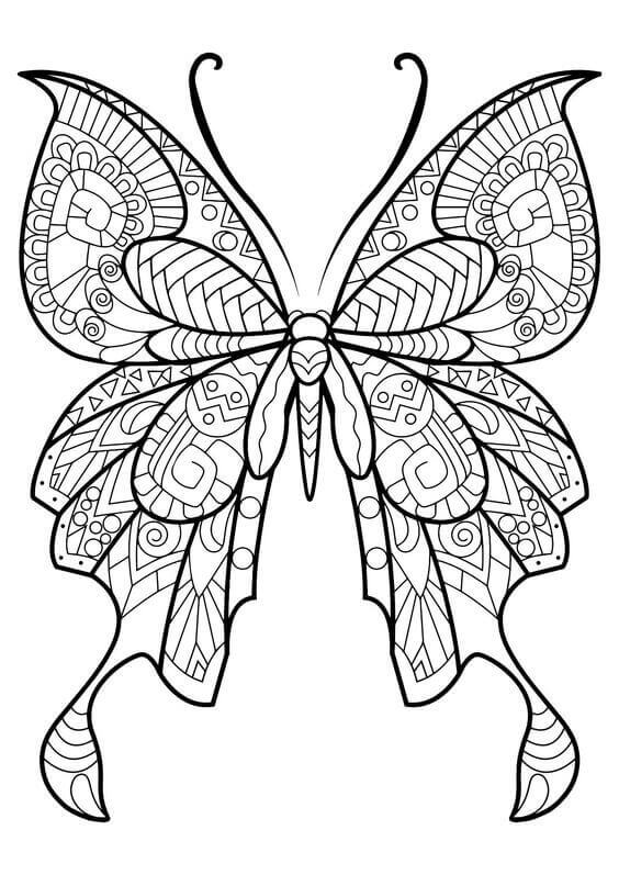 butterfly color sheets butterfly coloring pages for kids sheets color butterfly
