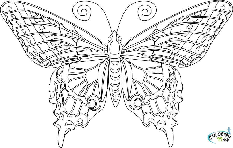 butterfly color sheets simple butterfly coloring pages getcoloringpagescom sheets color butterfly