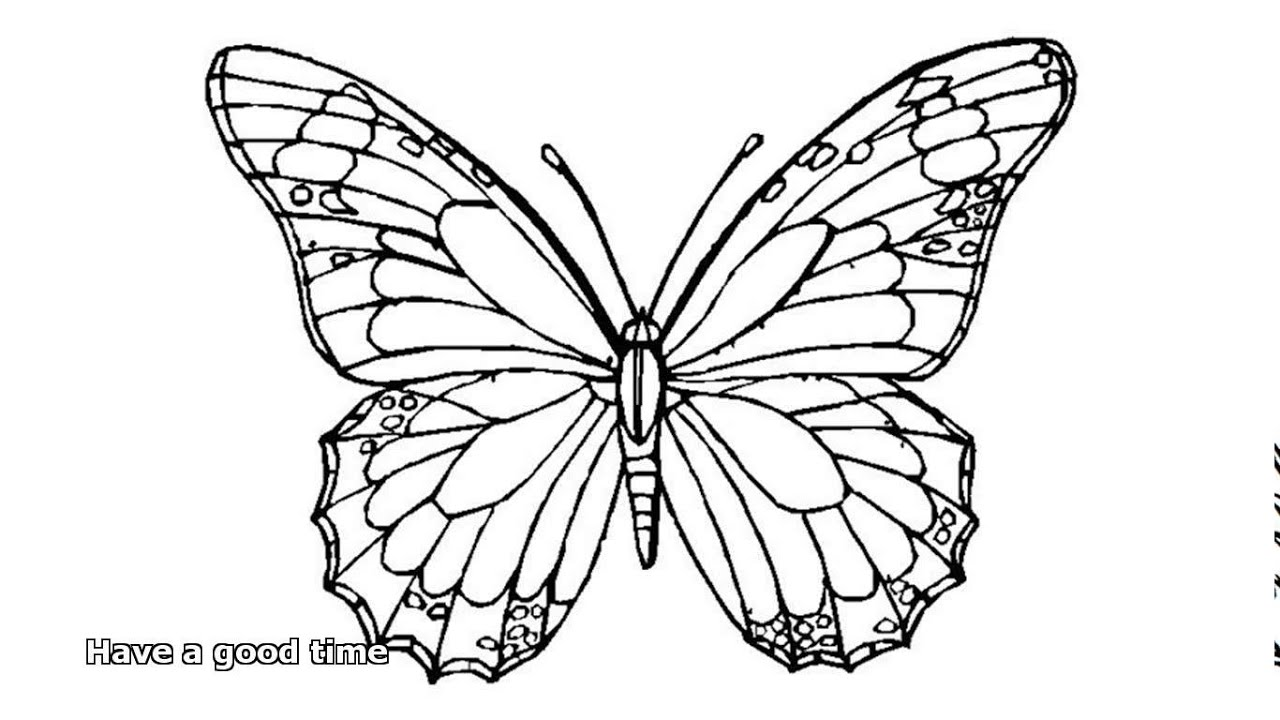 butterfly pictures to color butterfly coloring pages color pictures to butterfly