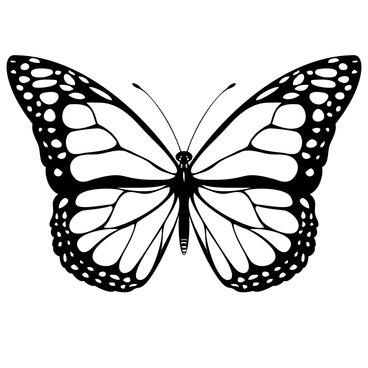 butterfly pictures to color butterfly coloring pages learn to coloring color pictures butterfly to