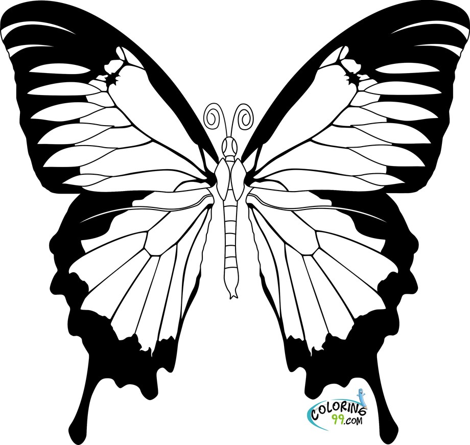 butterfly pictures to color butterfly coloring pages team colors butterfly color pictures to