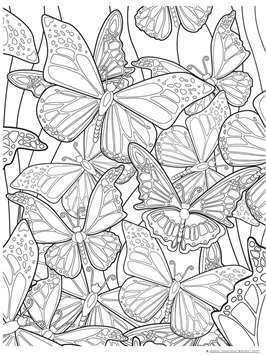 butterfly pictures to color butterfly pictures to print david simchi levi pictures butterfly color to