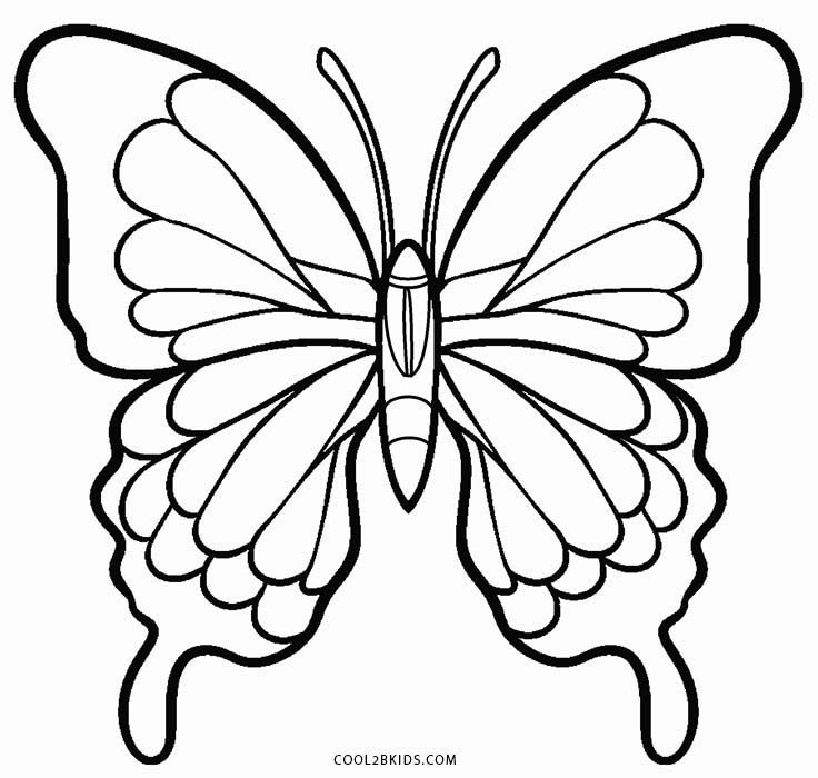 butterfly pictures to color printable butterfly coloring pages for kids cool2bkids to butterfly color pictures