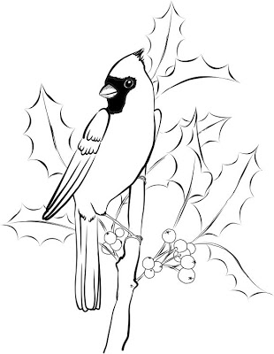 cardinal coloring pages cardinal coloring page samantha bell coloring cardinal pages