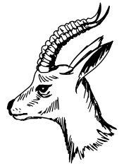 cartoon antelope antelope clip art free vector in open office drawing svg cartoon antelope