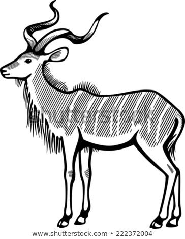cartoon antelope antelope clip art vector graphics 1042 antelope eps antelope cartoon