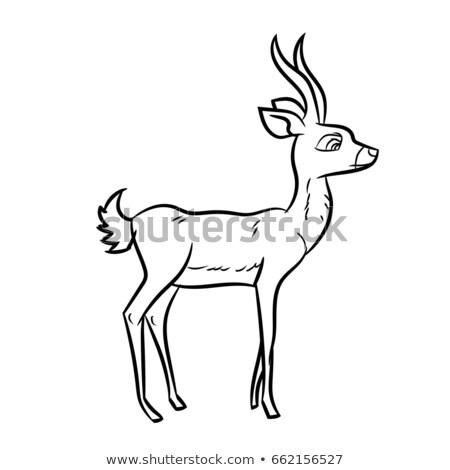 cartoon antelope antelopes cartoon stock images royalty free images antelope cartoon