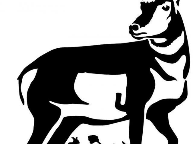 cartoon antelope pronghorn antelope clipart addax free clipart on antelope cartoon