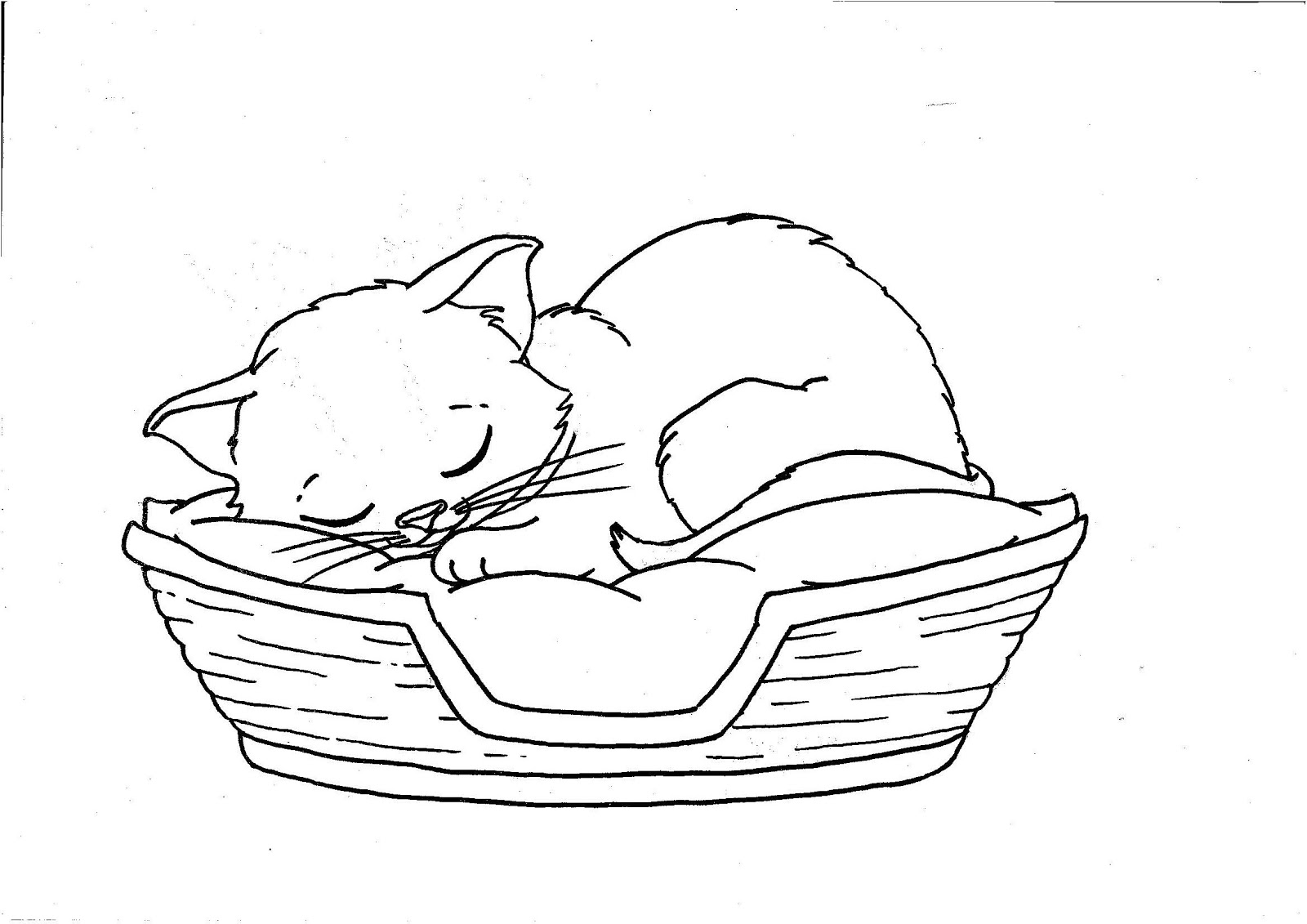 cats pictures to color cute kitten coloring pages getcoloringpagescom to pictures cats color