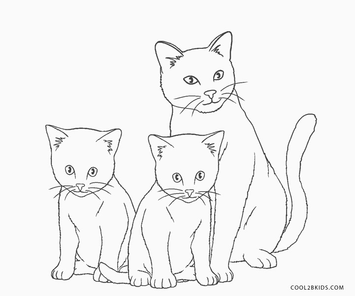 cats pictures to color free printable cat coloring pages for kids to color cats pictures