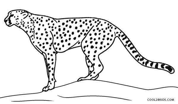 cheetah colouring page cheetah sitting coloring page free cheetah coloring cheetah colouring page