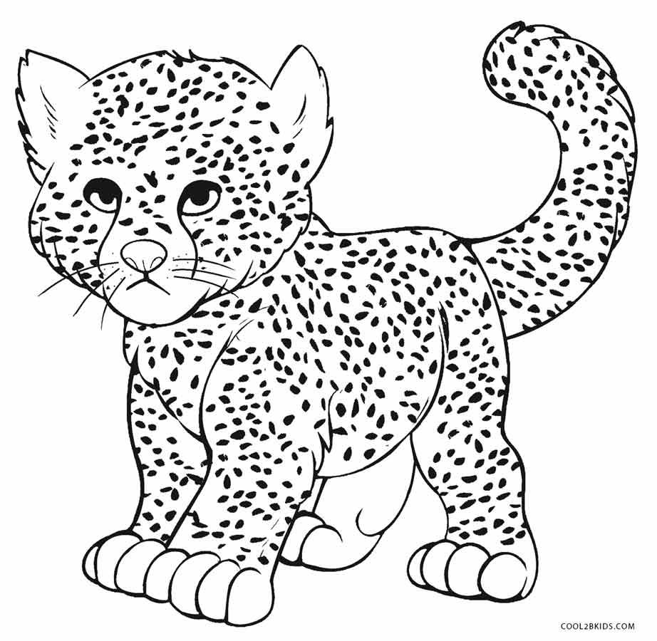 cheetah colouring page free cheetah coloring pages page colouring cheetah