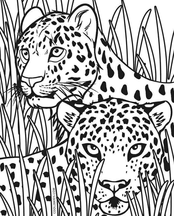 cheetah colouring page free printable cheetah coloring pages for kids page colouring cheetah