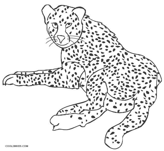 cheetah colouring page printable cheetah coloring pages for kids cool2bkids colouring cheetah page