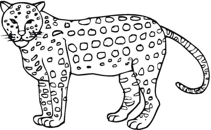 cheetah colouring page printable cheetah coloring pages for kids cool2bkids page cheetah colouring