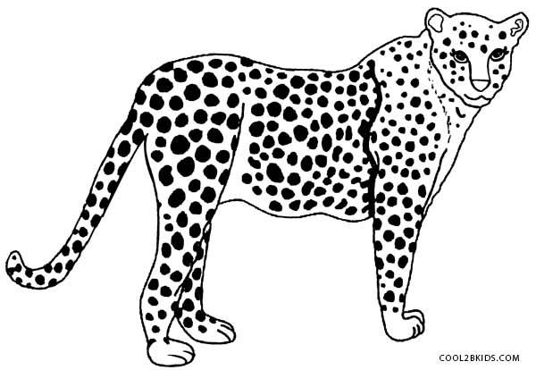 cheetah colouring page printable cheetah coloring pages for kids cool2bkids page cheetah colouring 1 1