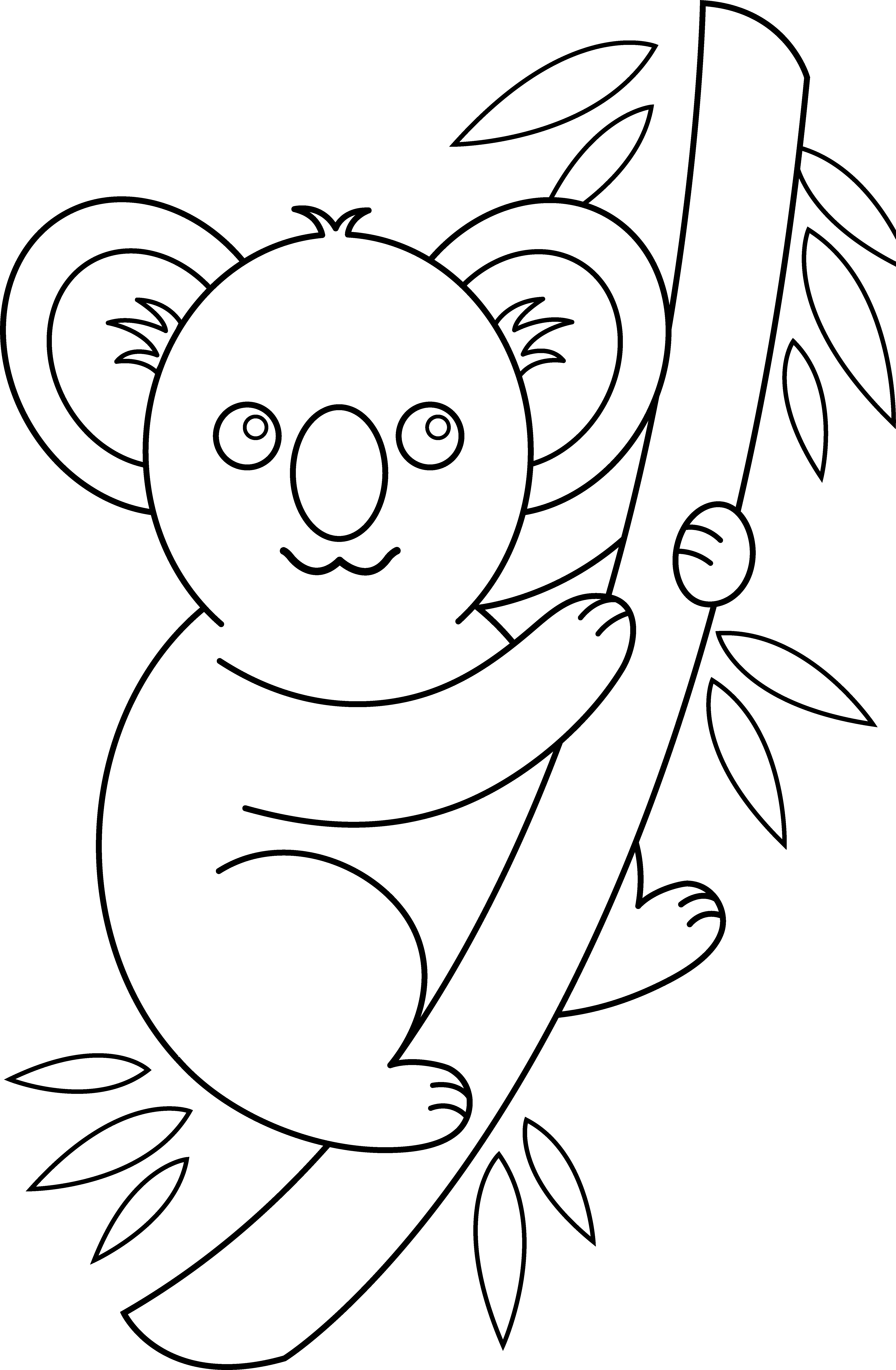 clip art coloring pages koala coloring page free clip art pages clip art coloring