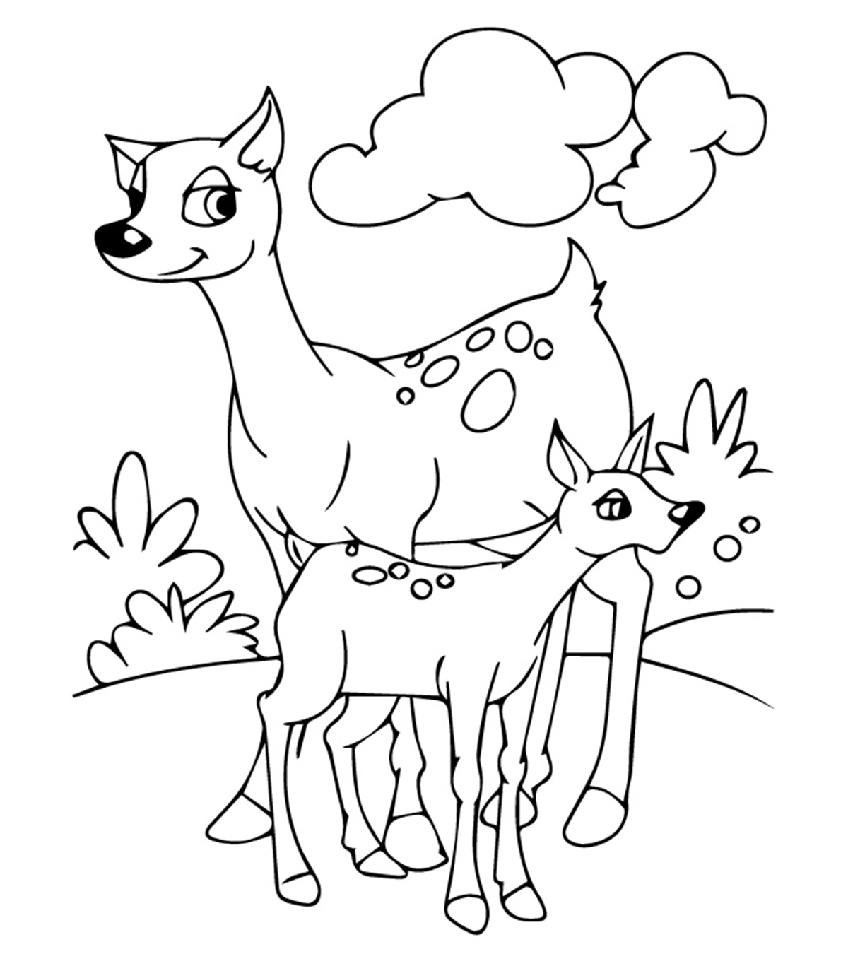 color pages of animals animal coloring pages momjunction animals pages of color
