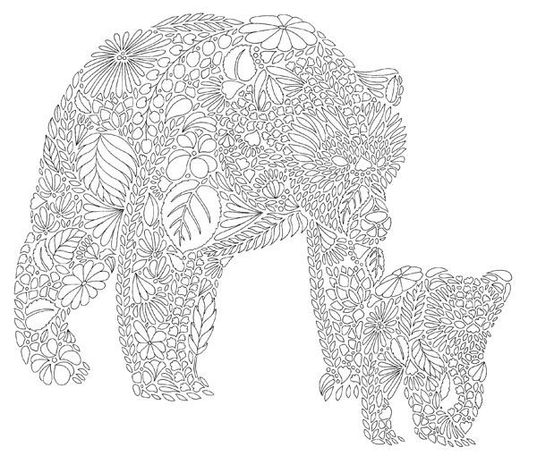 coloring animal kingdom 1000 images about animal coloring pages for adults on kingdom coloring animal