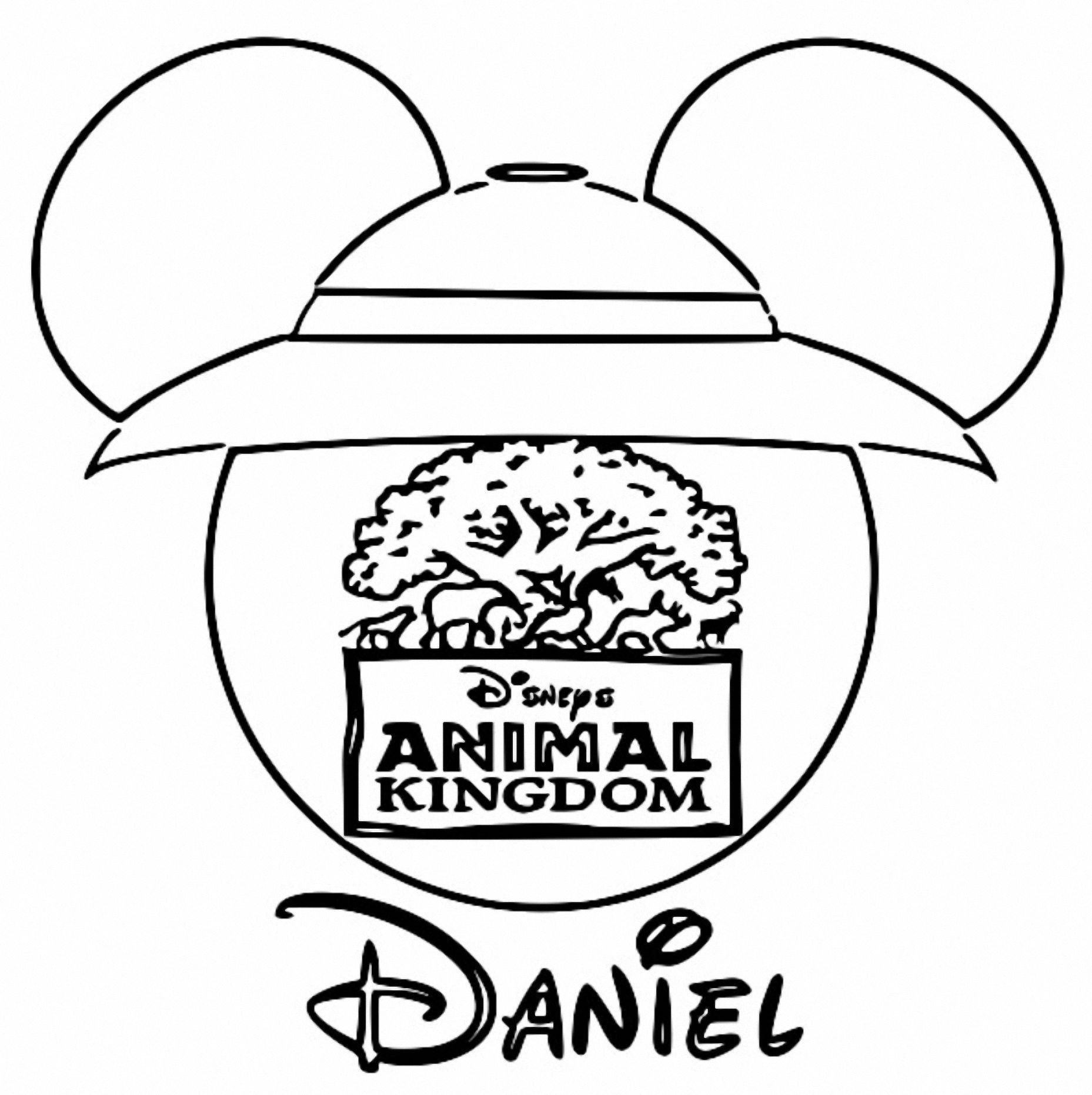 coloring animal kingdom animal kingdom color me draw me a millie marotta adult kingdom coloring animal