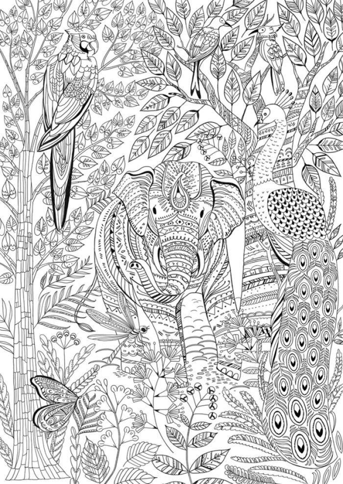 coloring animal kingdom cleverpedia inkspirations november coloring book giveaway kingdom animal coloring