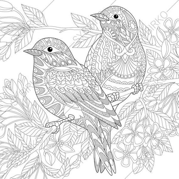 coloring book adults printable adult coloring pages sparrow birds zentangle doodle coloring coloring printable book adults