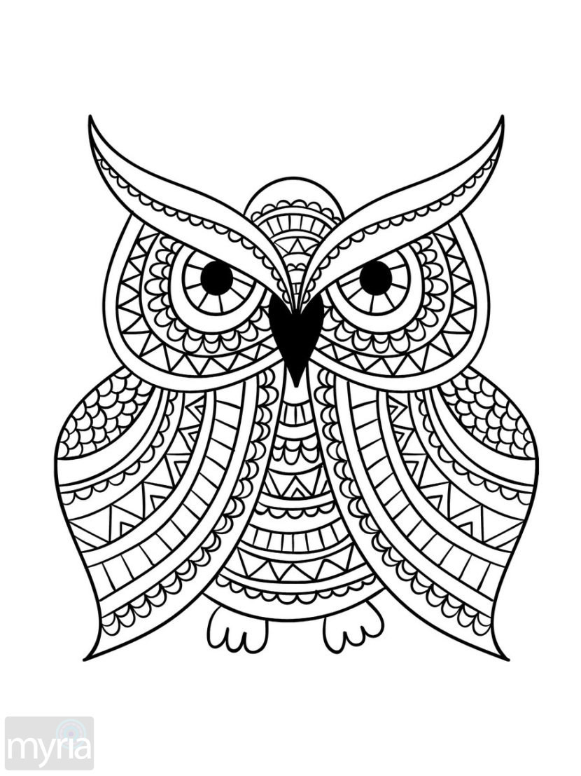 coloring book adults printable like a boss printable adult coloring pages free adult printable adults coloring book