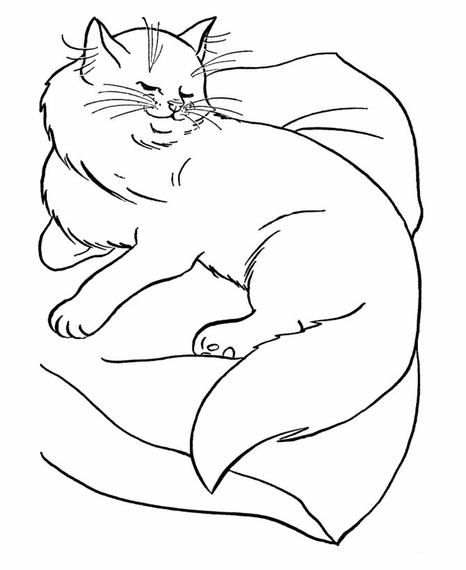 coloring book cat ble the cat coloring pages printable kids colouring pages coloring book cat
