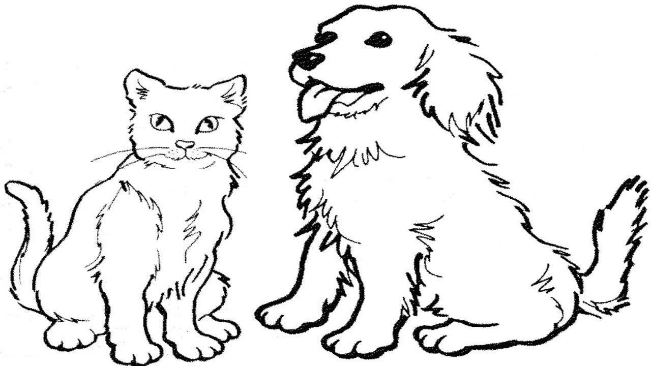 coloring book cat creative kittens marjorie sarnat design illustration coloring book cat
