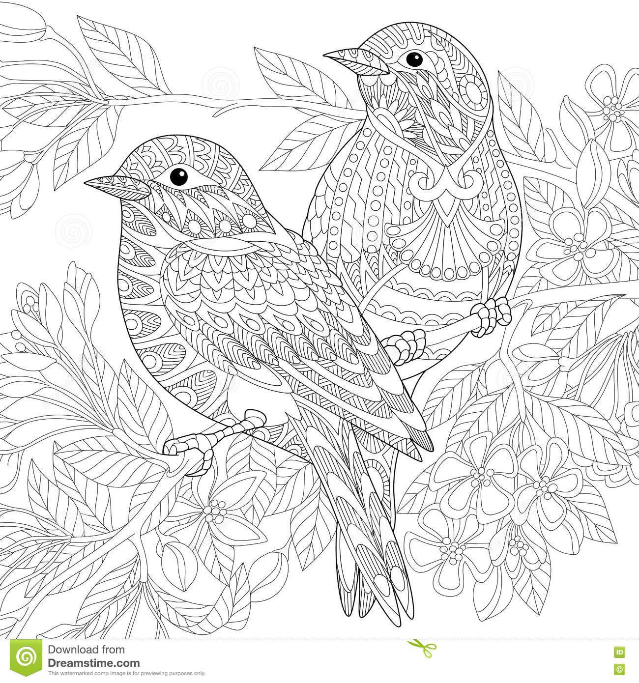 coloring book for adults souq دفاتر تلوين للكبار فكرة مجنونة باعت مليون نسخة adults souq coloring for book
