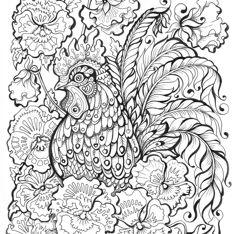 coloring book for adults souq zentangle stylized birds stock vector illustration of adults for coloring souq book